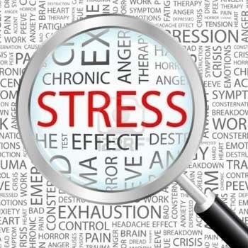 Stress on Truckers | CDLjobs.com