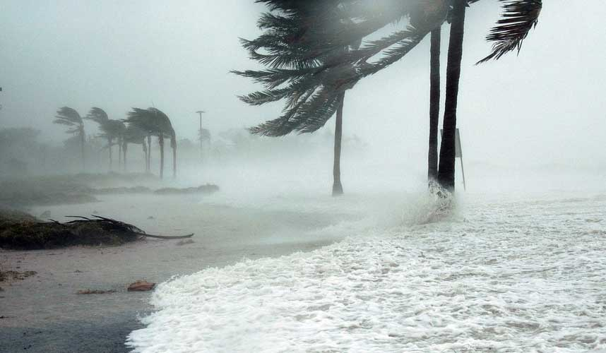 Hurricane Effect on Southeastern Trucking